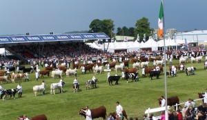 Parade of Champions at the Royal Highland